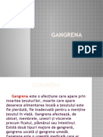 Ingrijirea Pacientului Cu Gangrena