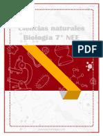 NEE - pdf