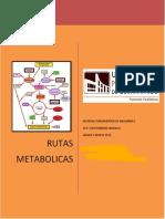 Cuestionario Unidad 4 Bioquimica Rutas Metabolicas 2