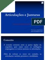 Junturas[1]