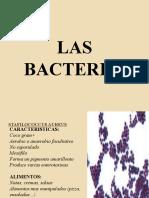 BACTERIA MOHOS Y LEVADURAS