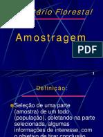 Inventario Florestal - Amostragem