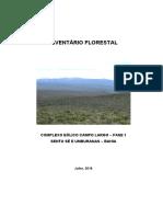 Estudo de Caso - Inventario Complexo Eolico Campo Largo