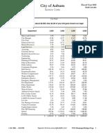 Service Costs, City of Auburn budget document