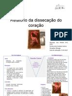 Dissecação Do Coração de Um Mamífero ( Relatório v de Gowin )