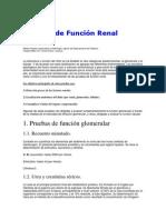 pruebas de funcion renal