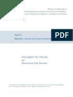 Migration Marche Du Travail Et Developpe (1)