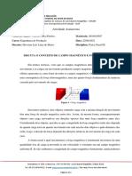 DISCUTA O CONCEITO DE CAMPO MAGNÉTICO E FORÇA MAGNÉTICA