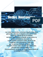 REDES NEURONALES (1)