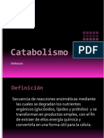 Catabolismo i anfibolismo
