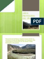 AREA-PROTEGIDA-DEL-IÑAO