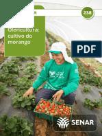 238 Olericultura Cultivo Do Morango