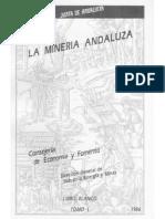Libro Blanco de La Mineria Andaluza