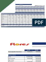 Formato_de_Flujo_de_efectivo Directo POSITIVO