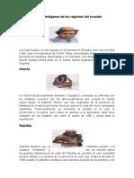 Pueblos indígenas de las regiones del ecuador