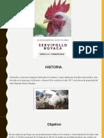 Canales de distribucion Servipollo Boyaca