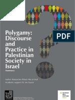 Arab Israeli Polygamy Research Summary