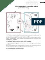 Ciclo Biológico Leishmaniose e Doença de Chagas
