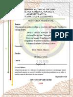 T.GRUPAL1 ORGANIZADOR GRÁFICO DE LA GESTIÓN AMBIENTAL (1)