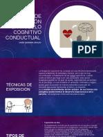 Técnicas de La Terapia Cognitivo Conductual