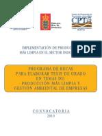 revista2010
