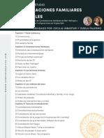 PROGRAMA CFI II edición