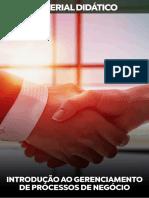 Introdução-ao-Gerenciamento-de-Processos-de-Negócio