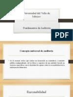 Fundamentos de Auditoria Unidad 1