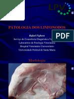 Rafaelfighera Patologia Dos Linfonodos