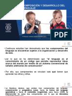 COMPOSICIÓN Y DESARROLLO DEL LENGUAJE