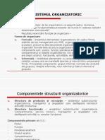Sistemul Organizatoric