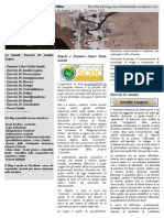 Report Sanita' (Vannetiello)