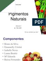 pigmentosnaturais-180425024315 (1)