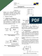 Estudo XD
