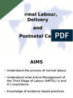Normal Labor - AMTSL