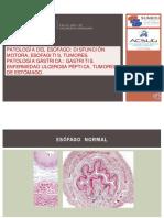 Clase 09.- Patologia Digestiva i (17 Noviembre 2020)
