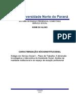 Relatorio Estagio Ana Paula