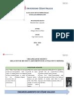 Anexo 1 ORGANIZADOR GRÁFICO Relación de Hechos y Argumentos S5 2020-II