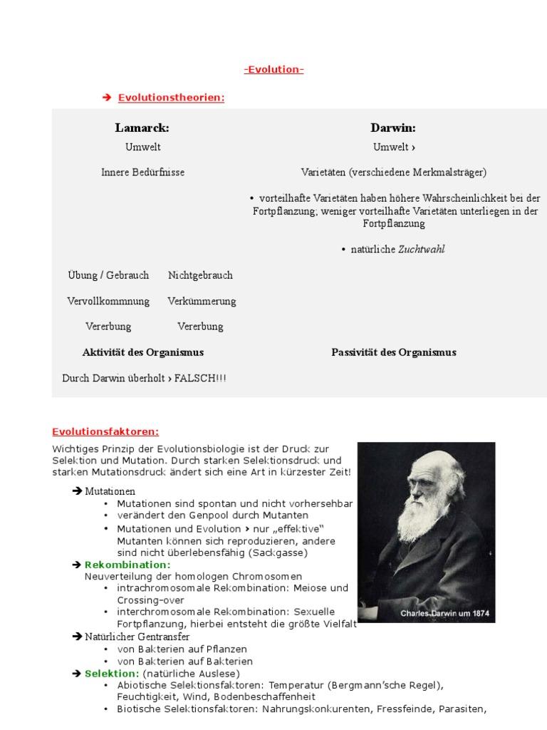 Outstanding Evolution Und Natürliche Selektion Arbeitsblatt Photos ...