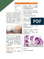 endodontia aula 2