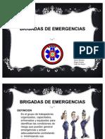BRIGADAS_DE_EMERGENCIAS