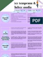 Cuadro comparativo  Adultez temprana y adultez media (1)