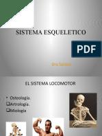 osteologia composicion