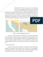 FORMULACION Y EVALUACION DE PROYECTOS - 2DA ENTREGA