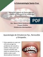 Lesiones Orales en el Tratamiento de Ortodoncia. Dra. Bianca Fabiola Zambrana Barrancos.