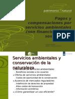 Pagos y compensaciones por servicios ambientales ¿son financieramente sostenibles?