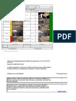 Reporte de Inspección JJC-GP-06 TN 10-03-21