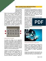 Lectura Dimensiones y Estructura Organizacional