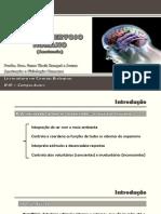 AT 03 - Anatomia do Sistema Nervoso - parte 1
