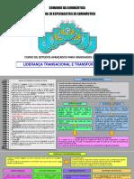 2 LIDERANÇA TRANSACIONAL E TRANSFORMACIONAL